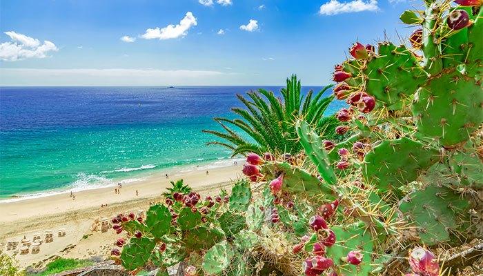 mooiste canarische eiland