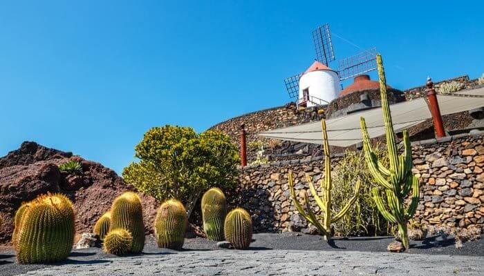 cactustuin bijzondere bezienswaardigheden lanzarote